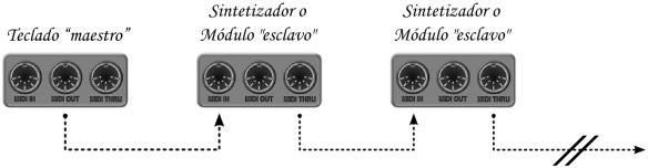 Conexión MIDI en cadena